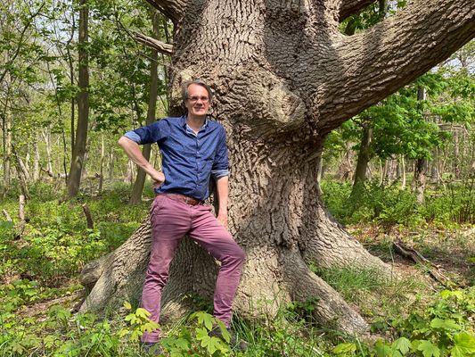 GroenGelovig tip: Wandelen met bomen