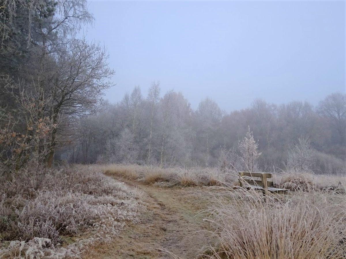 Ter Borg. Foto Janneke Meijer-Germs
