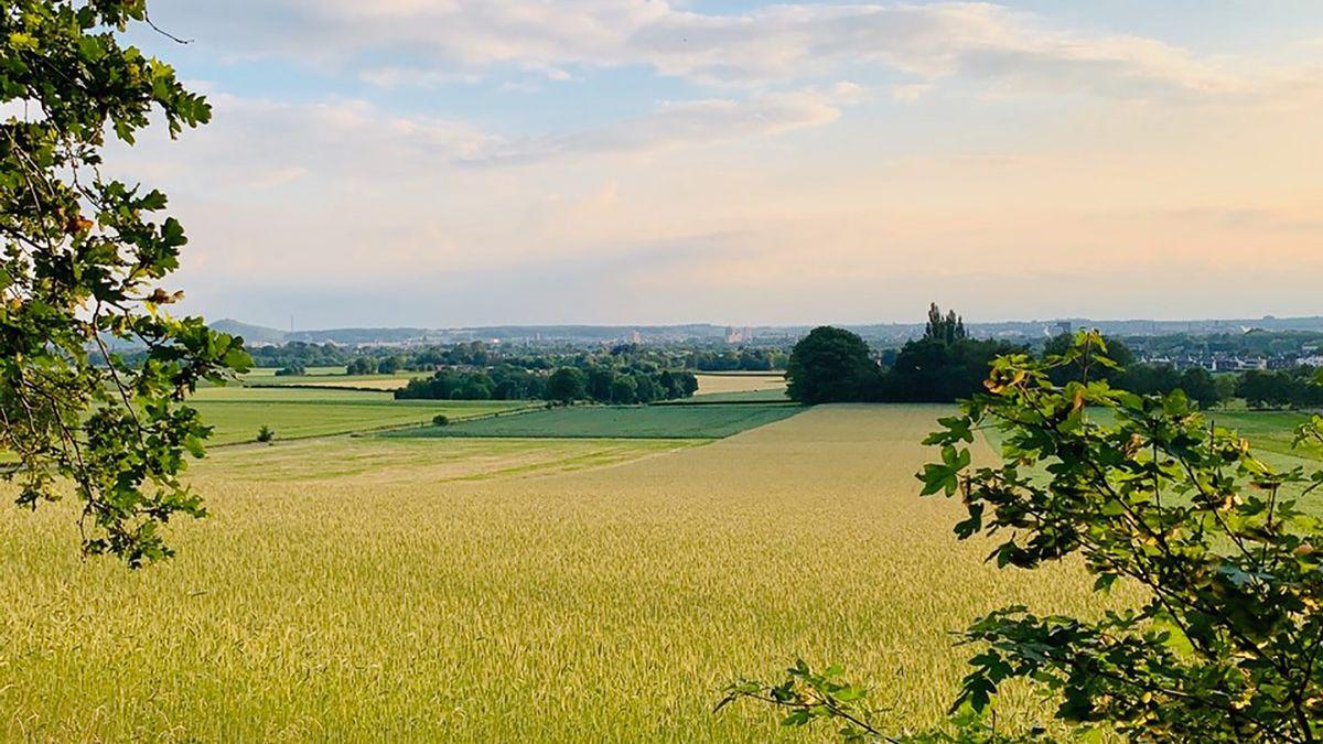 De-Dellen-landschap-liggend