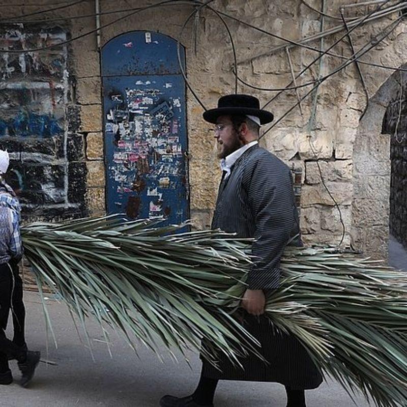 Vandaag begint het Loofhuttenfeest. Waarom vieren joden dit feest?